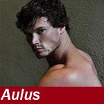 Aulus