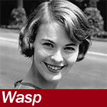 The Winsome Wasp